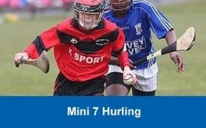mini-7s-hurling